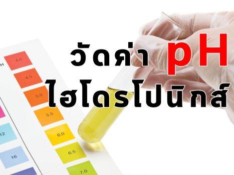 การวัดค่า pH พืชไฮโดรโปนิกส์
